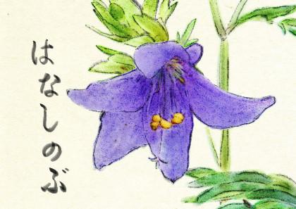 ファイル 170-1.jpg